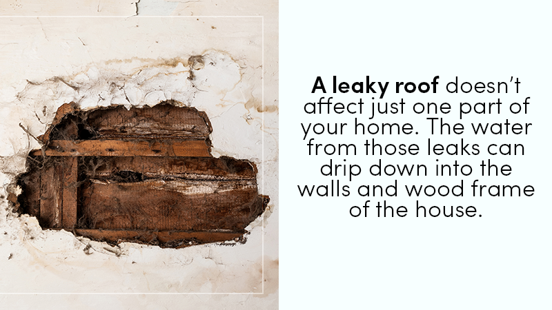 roof leakage repair
